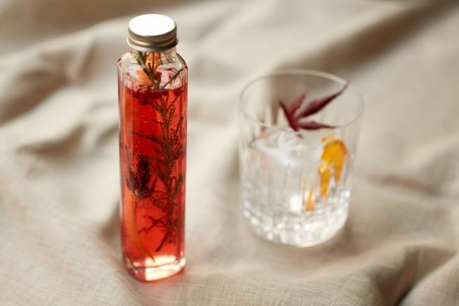 Spicy Herbarium