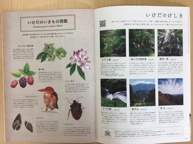 イラストで池田の植物や生き物も紹介