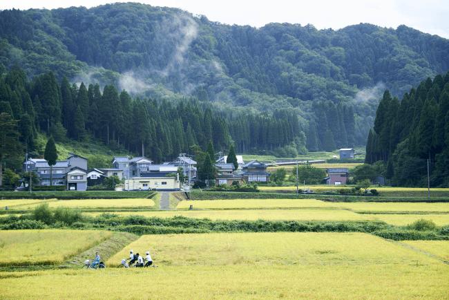池田町のよくある風景