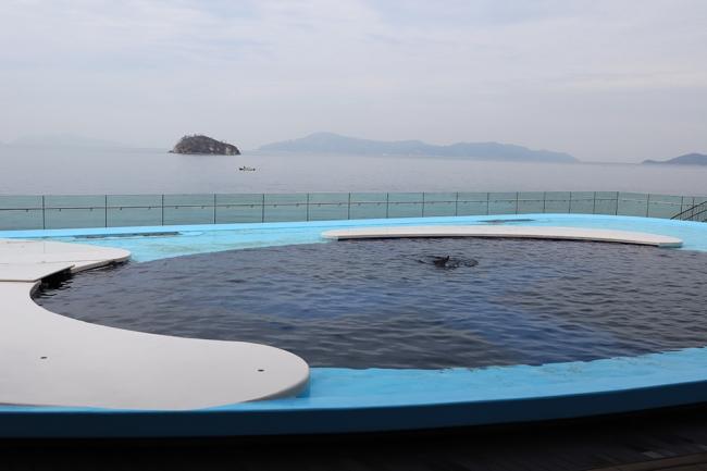 四国 水族館 オープン キャンペーン