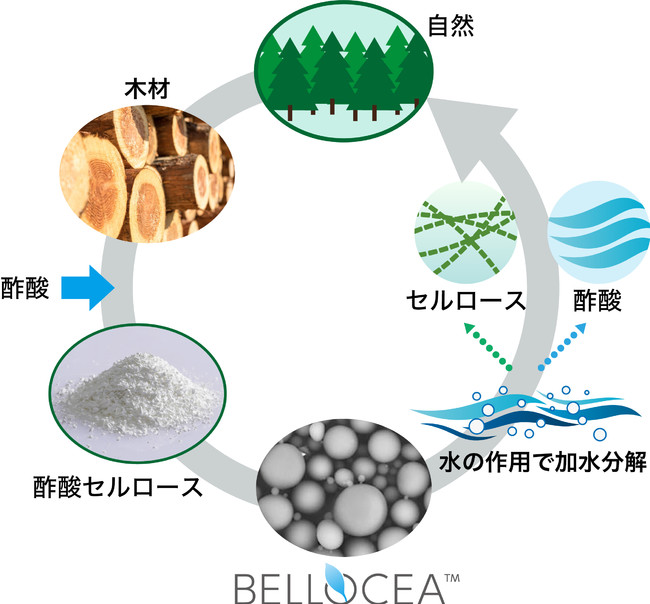 BELLOCEA(R)の自然界での循環イメージ