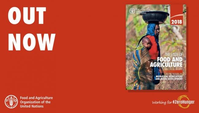 国際連合食糧農業機関(FAO) 駐日...