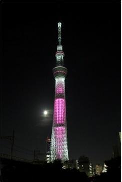 東京スカイツリー(R)ライトアップの様子(過去の様子)