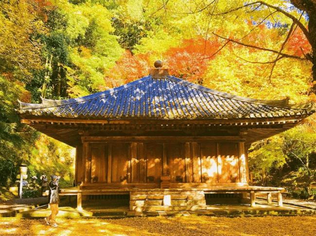 国宝「富貴寺大堂」 画像提供:芸団協