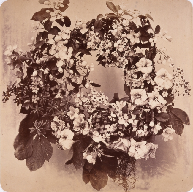 アドルフ・ブラウン《「装飾のための花の習作集成」より》1853年