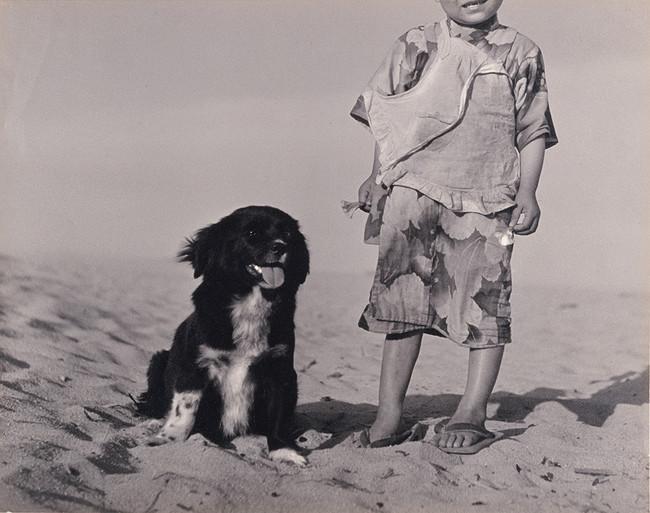 植田正治《狆》1938年 島根県立美術館蔵