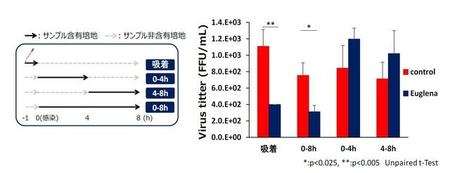 図2:各増殖段階におけるインフルエンザウイルスの増殖抑制効果