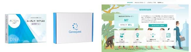 『ユーグレナ・マイヘルス 遺伝子解析サービス』、『ジーンクエスト ALL』のパッケージとリニューアルした「祖先解析」画面イメージ(ユーグレナ・マイヘルス 遺伝子解析サービス)