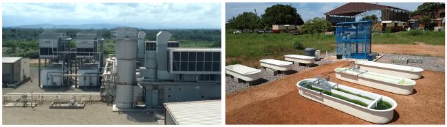 左:Drummond Ltd. Colombia社の火力発電所       右:現地培養データを取得するための培養槽