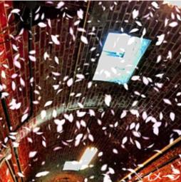 真冬の赤煉瓦酒造工場(東京・北区)に桜吹雪が舞う!2/8(土)・9(日)日本酒体験イベント「晴レの酒、花の宴。」を企画・演出 ~小野リサさんのボサノヴァライブなど、特別プログラムが盛りだくさん!!~