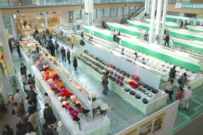 秋田県種苗交換会(9年前の秋田市開催の様子)