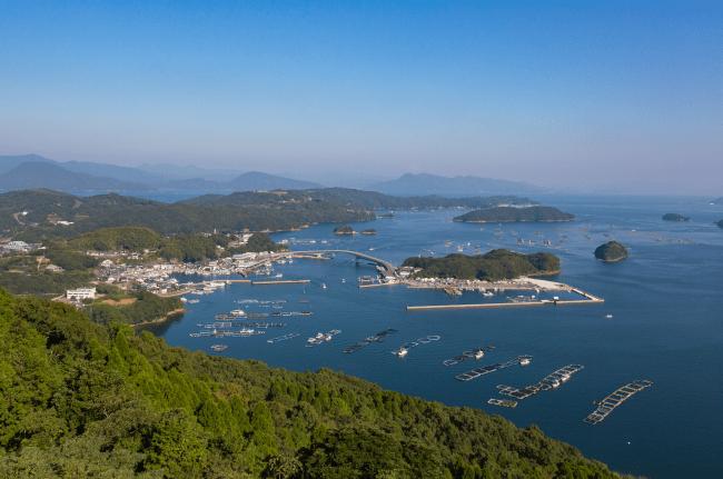 海流の干満差、潮流れの影響、気候、水温等のバランスがブリの養殖に最適な長島町。