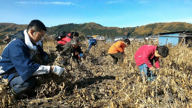 横田農場(小川町)