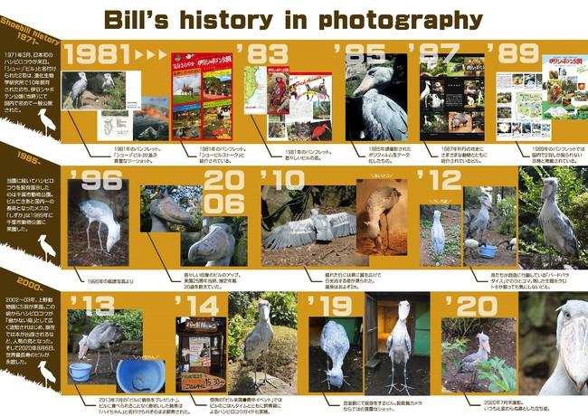 ビルの歴史