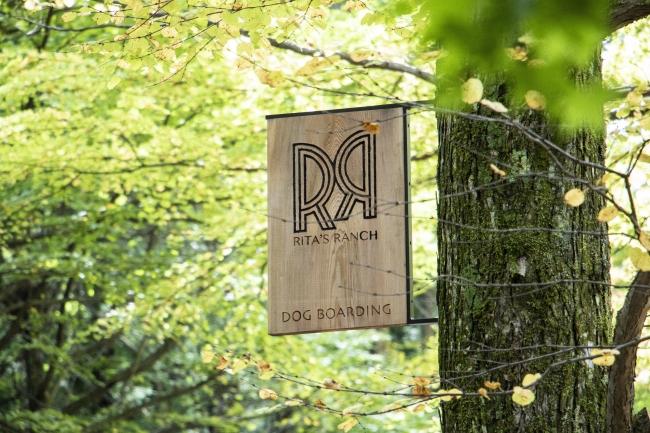 (C)RITAS RANCH 2018