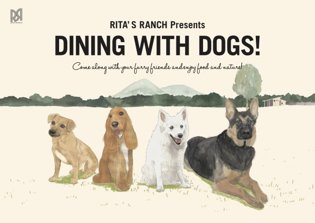 (C)DINING WITH DOGS, RITAS RANCH 2018
