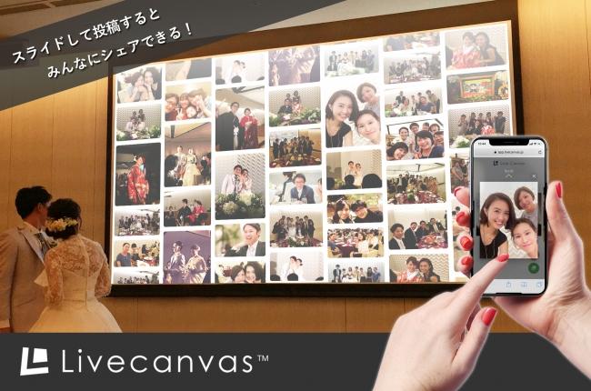 Livecanvas AR