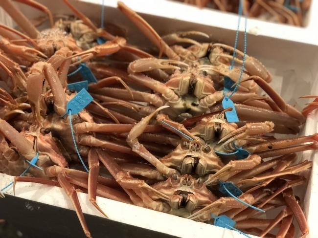 「加能ガニ」は石川県で獲れたズワイガニのオス