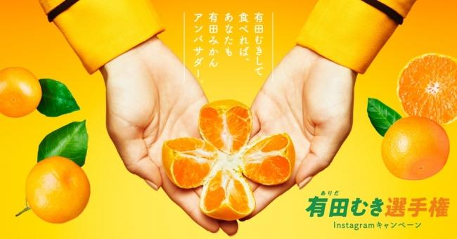 2018年開催「有田むき選手権」 早くて綺麗にむける称号は誰の手に!
