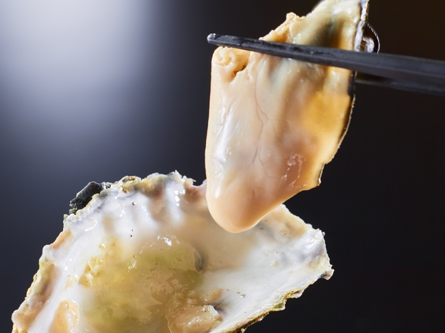 今が旬!新鮮な真牡蠣
