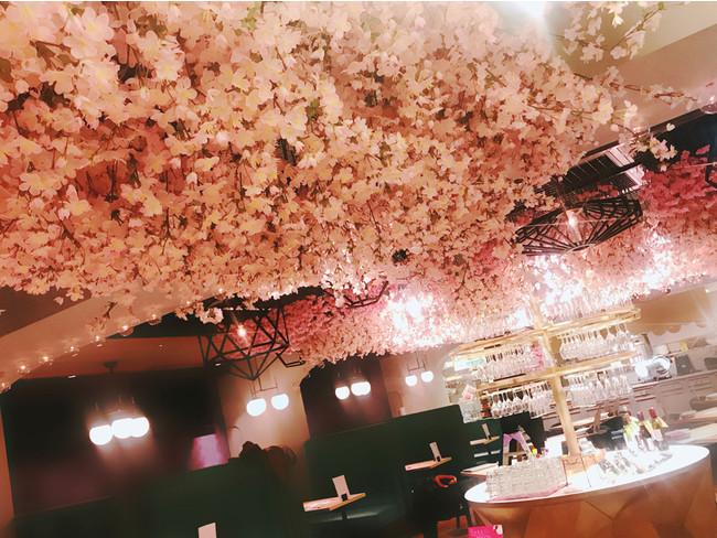 桜の造花がお店の天井を埋めつくす