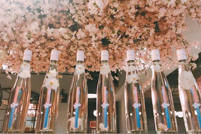 店内の桜を背景に 数量限定の「桜のワイン」