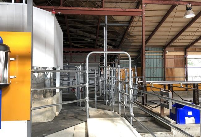 人と牛の動線を最適化するゲート