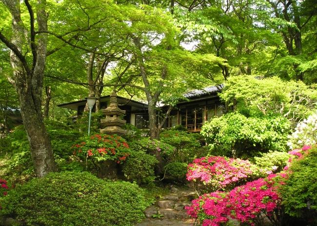 つつじ咲く庭園「華清園」