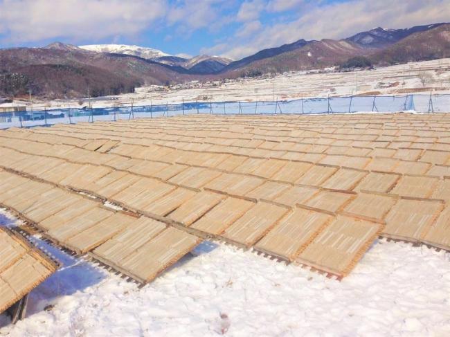 寒天畑(干し場)。冬の八ヶ岳を背景にキラキラと輝く寒天畑は一見の価値あり!