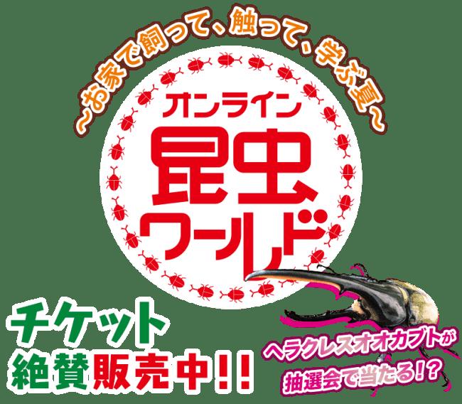 大学 コロナ 中京 岐阜県で4人感染確認 中部学院大学の学生ら、キャンパス内立ち入り禁止に(中京テレビNEWS)