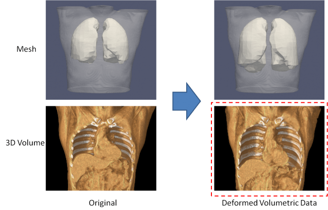 3Dボリュームデータの軟体変形機能(プロトタイプ生成結果)
