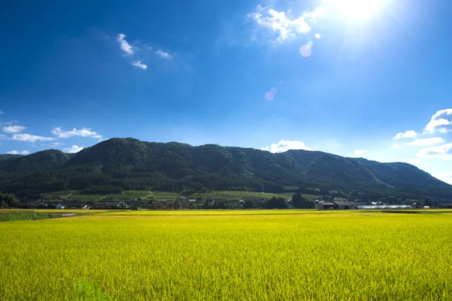 """""""日本の緑のグランドキャニオン""""こと万年山と自然が織りなす景観は圧巻"""
