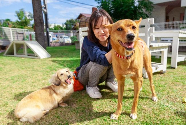 ホーム犬ルル(左)ターチ(右)