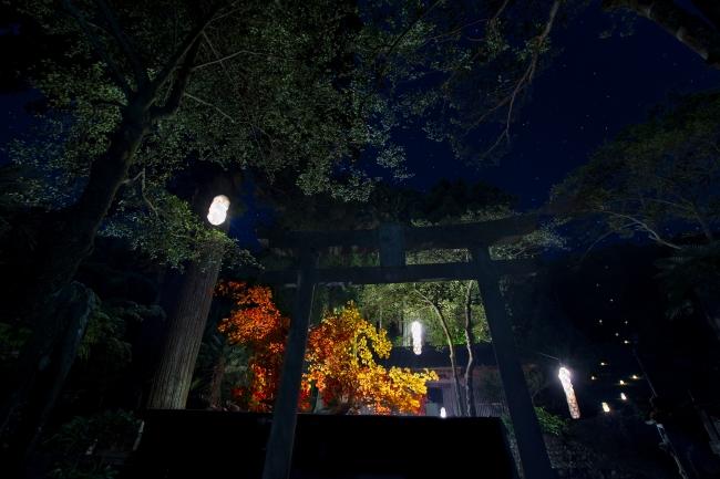 駿河シャクジ能 - 倭文神社