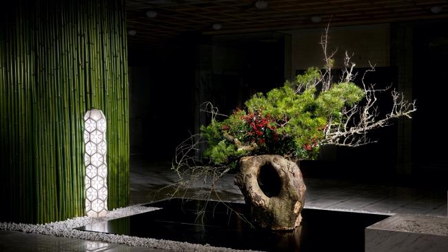 日本橋高島屋S.C.新館 年間展示 1月 松竹梅