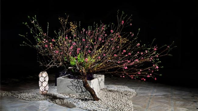 日本橋高島屋S.C.新館 年間展示 3月 桃 連翹 菜の花