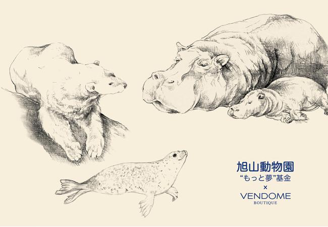 """旭山動物園""""もっと夢""""基金×ヴァンドームブティック"""