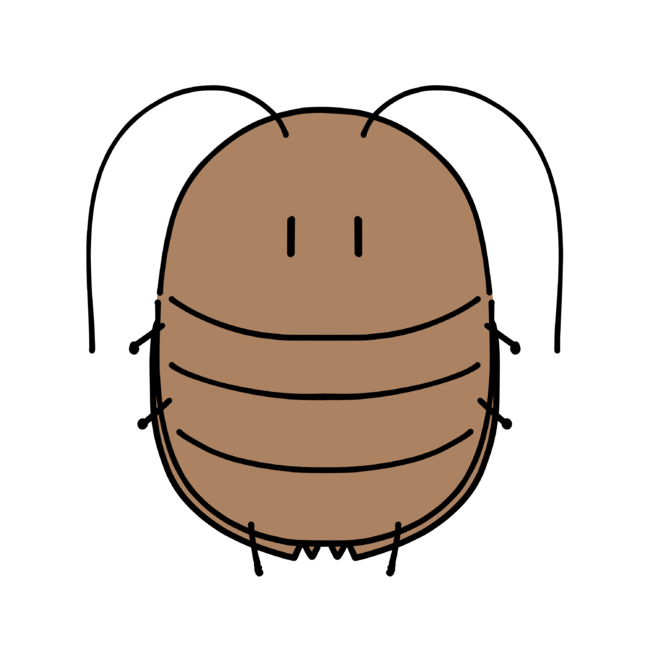 ゆるふわゴキブリ3
