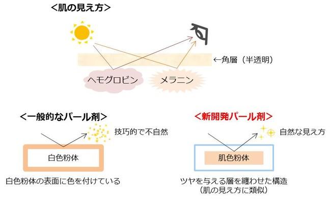 図2 肌の見え方と新開発パール剤の構造イメージ