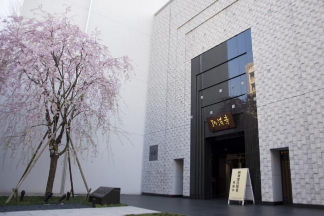入り口の画像です。春には枝垂れ桜が優雅に咲き誇ります。