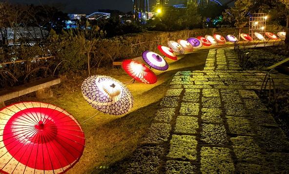 文化財×和傘(昨年の様子)
