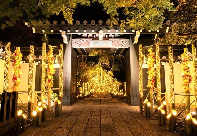聖門×竹あかり(昨年の様子)