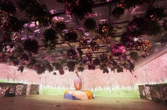 貸出画像「花とデジタルのアートショー」