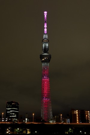 SDGs目標1「貧困をなくそう」(C)TOKYO-SKYTREE