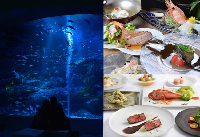 左)すみだ水族館/右上)國見/右下)LA SORA SEED FOOD RELATION RESTAURANT