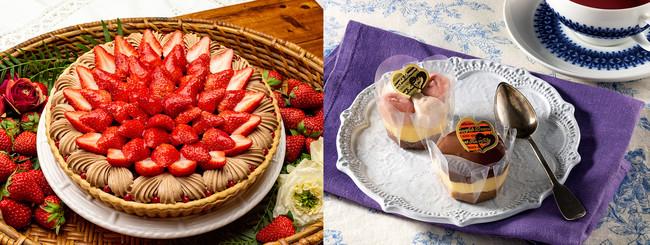 左)<キル フェ ボン>イチゴとチョコレートクリームのタルト ホール(13cm) ¥2,970/右)<フェスティバロ>ショコラソート(2個入) ¥500