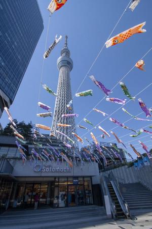 こいのぼりフェスティバル(ソラミ坂)(C)TOKYO-SKYTREETOWN