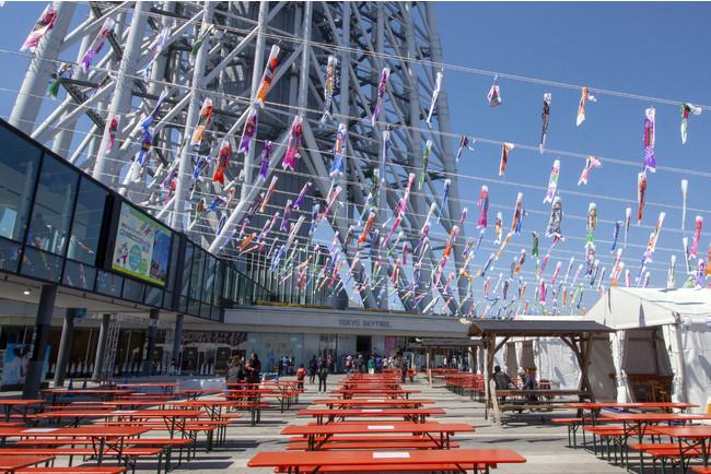 こいのぼりフェスティバル(スカイアリーナ)(C)TOKYO-SKYTREETOWN