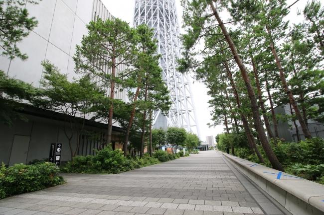 スカイアリーナ (C)TOKYO-SKYTREETOWN