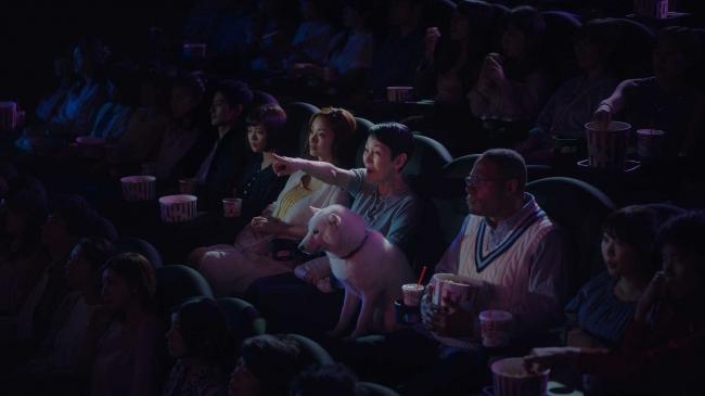 新テレビCM 白戸家「映画を観る」篇より